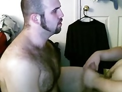 Young bears on webcam pleasing each other