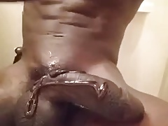 Chocolate Dick