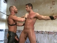 Handsome gay gets his butt stuffed with a toy and fucked afterwards