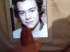 Harry Styles Cum Tribute