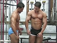 Muscle Porno Clips