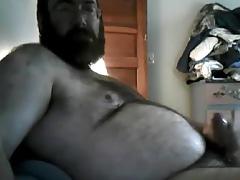 Hairy bear 26417