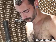 Mature bear barebacks cub in shower