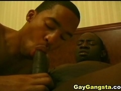 Two black gays play with each other's cocks and bang doggy style