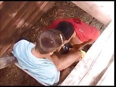 Boys Fucking in a Barn