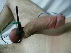 Gay Cock electro Torture