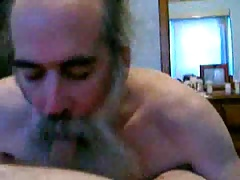 bearded daddy bear sucking cock