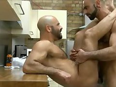 Bears sex in the kitchen