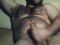 Very handsome spanish bear stroking