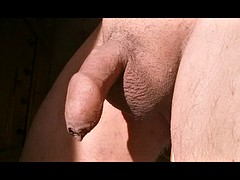 My small dick collection