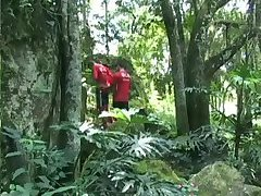 Gays have sex in the forest
