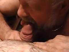 Daddy bear enjoys cock