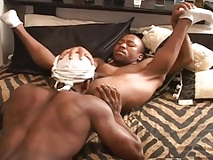 three black thugs have a hot and steamy threeway