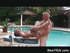 Gay bears hammering their fat asses