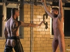 A gay gets his cock-head smeared with hot wax in BDSM video