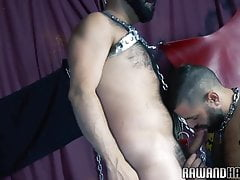 Hairy hunk rims bears ass and gets drilled