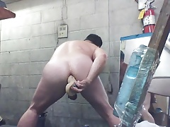 JoeyD's smooth round butt taking mounted dildo deep