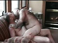 Hairy bears .... mmmm