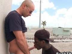 White man gets dick sucked by black