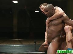 Black muscle wrestling hunk cocksucks jock
