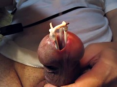 urethra in a very hot white wax