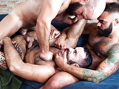 Sizzling Hot Beard City Gay Threesome