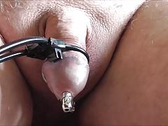 zuckender penis