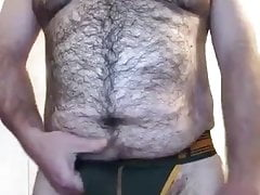 Hairy bear in his jocks